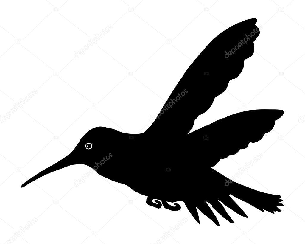 colibrí — Archivo Imágenes Vectoriales © rbiedermann #10314447