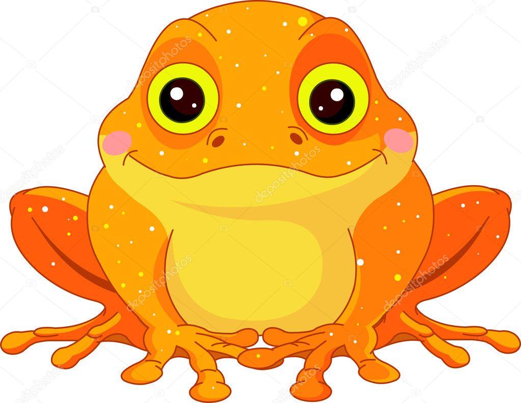 Fun zoo. Golden Toad