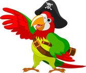 Fotografie pirát papoušek