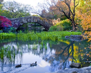 Central Park, New York. Beautiful park in beautiful city.