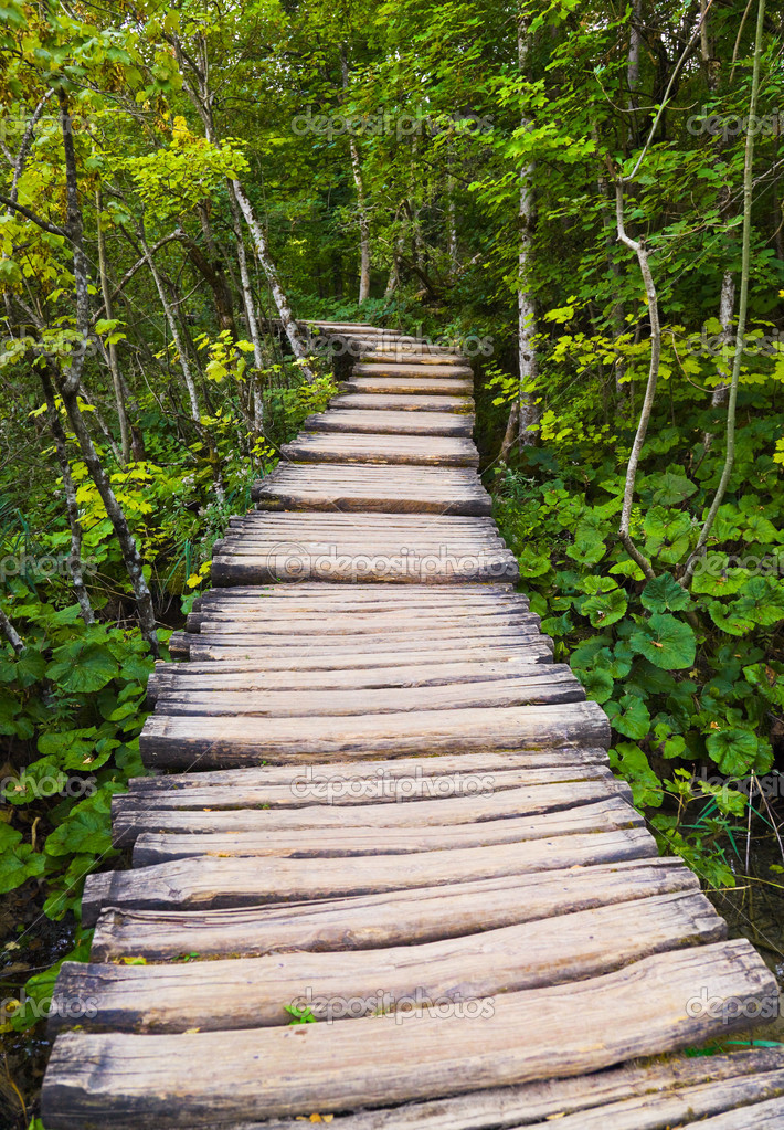 Pathway in Plitvice lakes park at Croatia