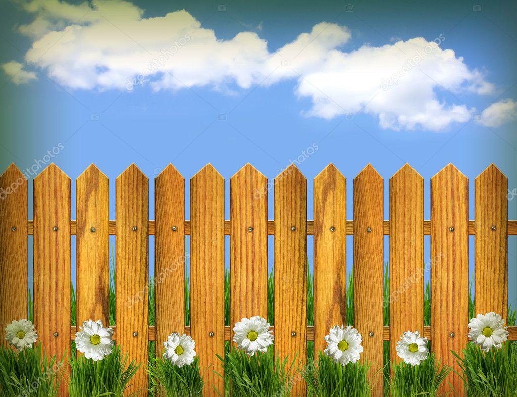 Zaun und weiße Blüten mit blauen skyntage Hintergrund