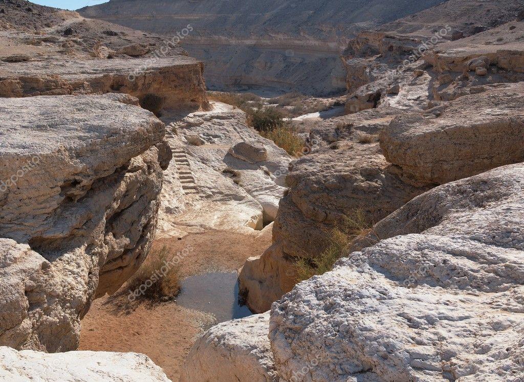 Piccolo stagno nel deserto canyon foto stock slavapolo for Piccolo stagno