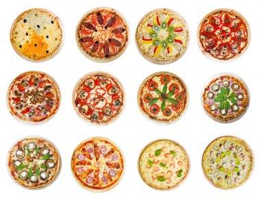Twelve different pizzas