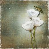 Fotografia sfondo vintage con Rose
