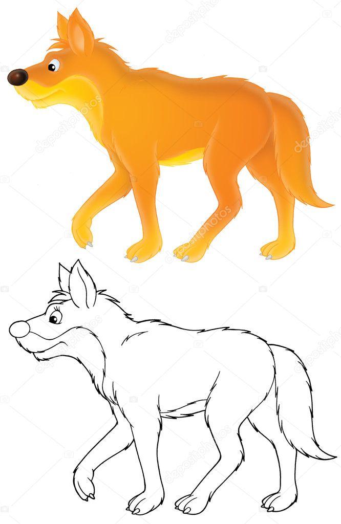 Dingo Perro Salvaje Foto De Stock Alexbannykh 9260138