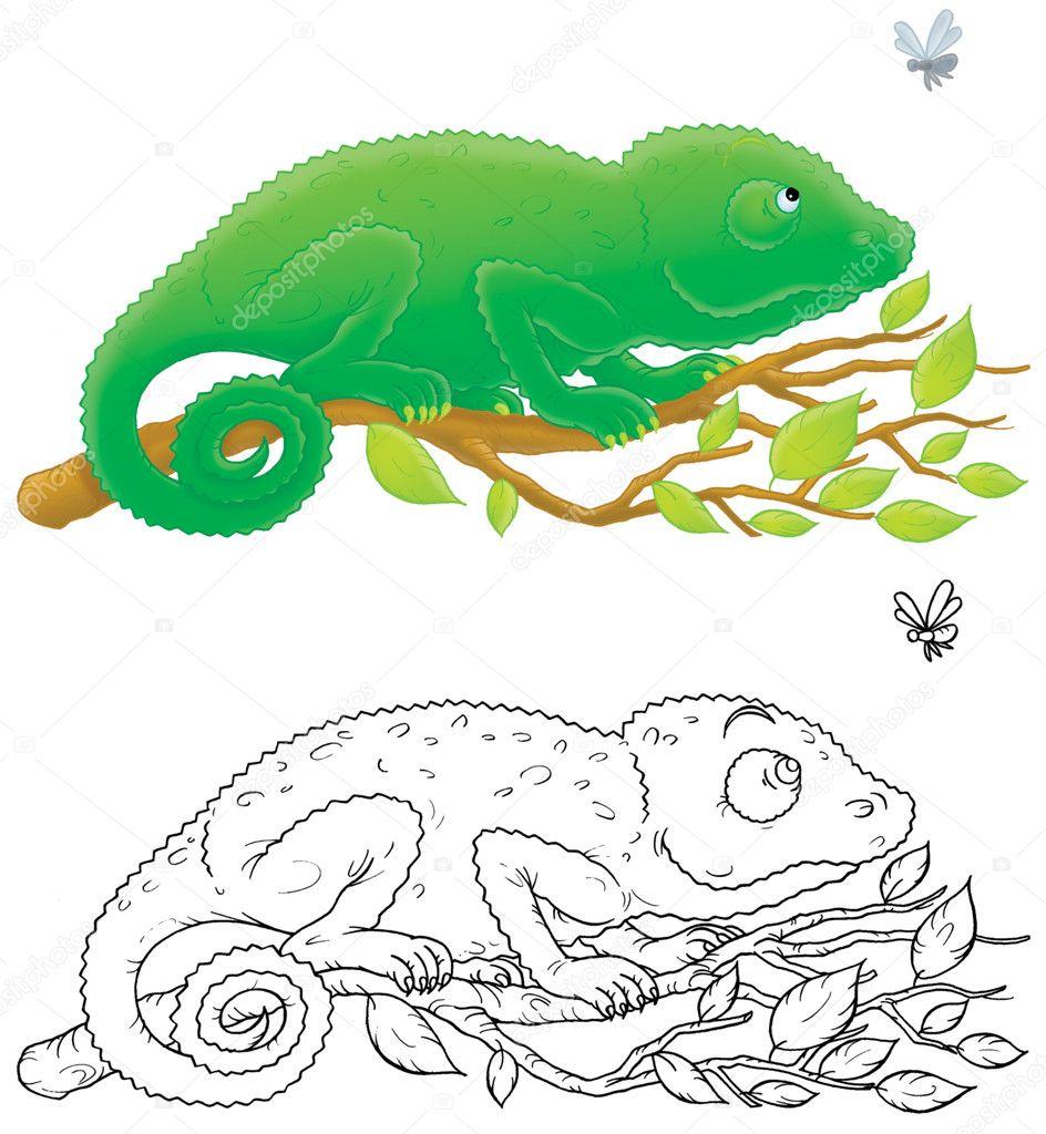 Chameleon — Stock Photo © AlexBannykh #9260142
