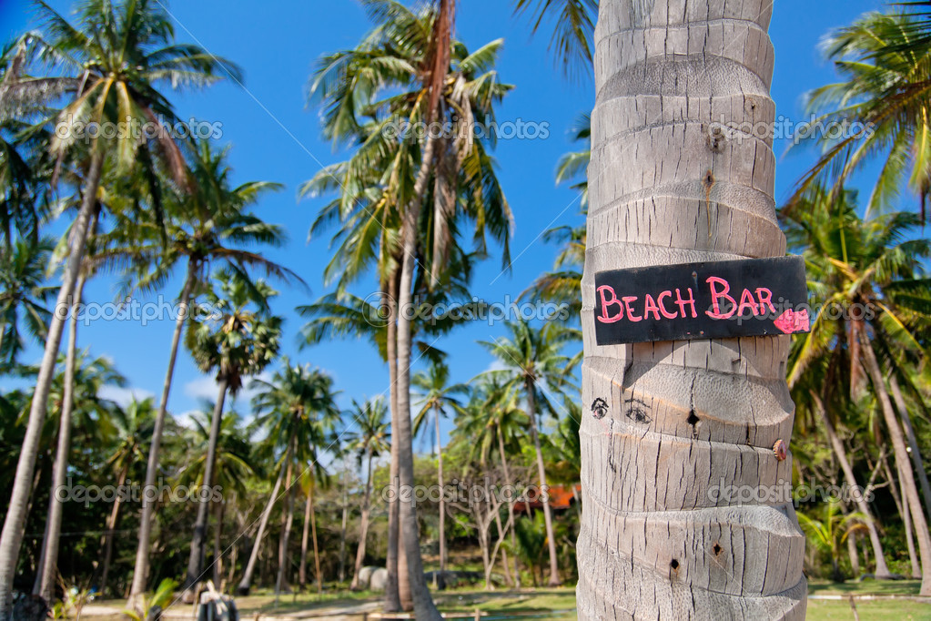 Beach bar sign on palm tree trunk