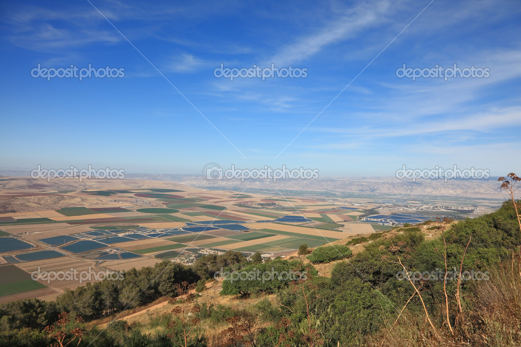 Blossoming valley in the Isreel Valley