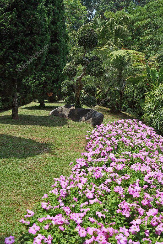 Bellissime aiuole fiorite prati e alberi tropicali foto for Aiuole fiorite immagini