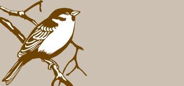 bird silhouette on brown background, vector illustration