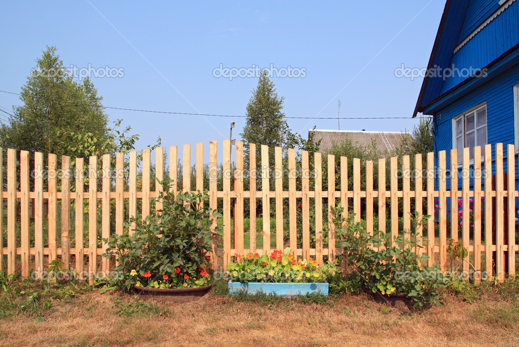 Autumn flowerses near wooden fence