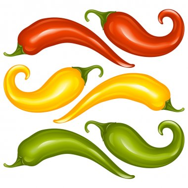 Hot chilli pepper vector set isolated on white background. Red, yellow and green.