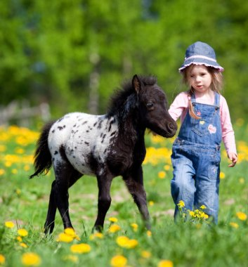 Child and foal in the field