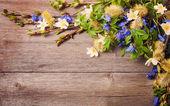 Fotografie Frühlingsblumen auf Woode Hintergrund
