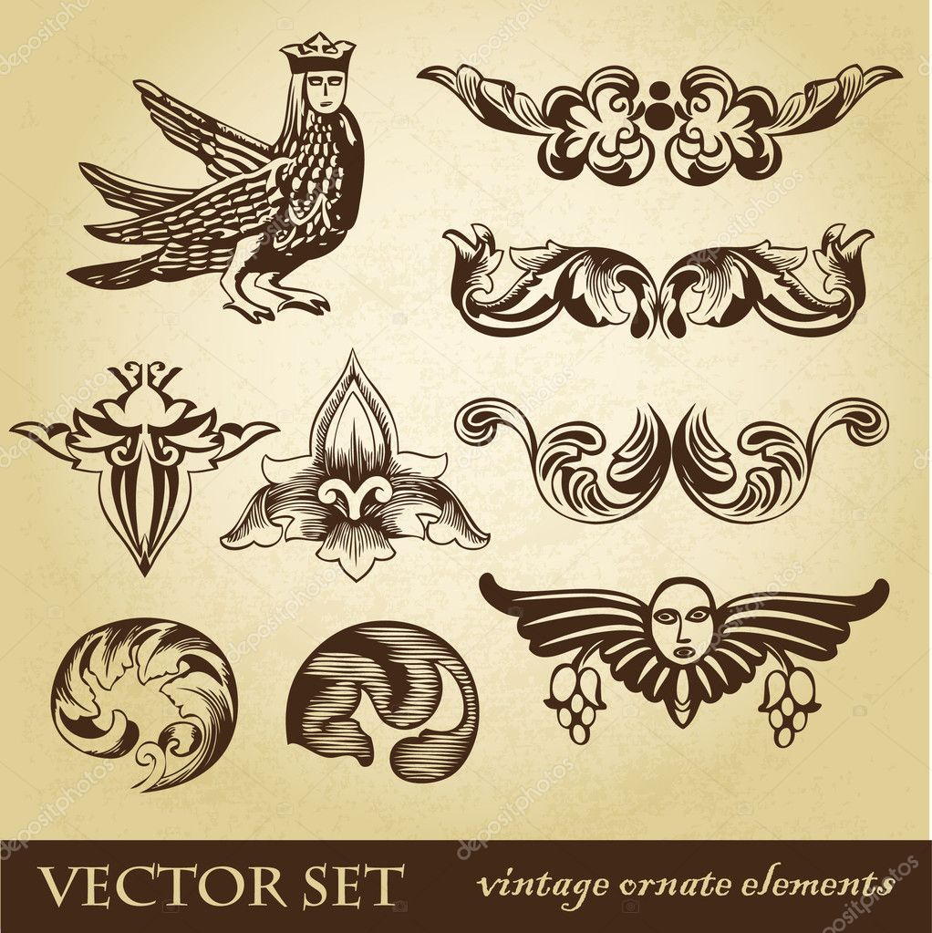 Vector set di elementi di design vintage e animali for Elementi di design