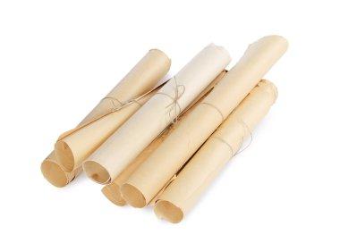 Many scrolls isolated on white isolated on white