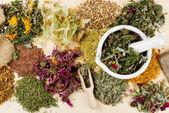 léčivé byliny na dřevěný stůl, bylinné medicíně