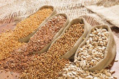 Seeds of mustard, flax, coriander and sunflower