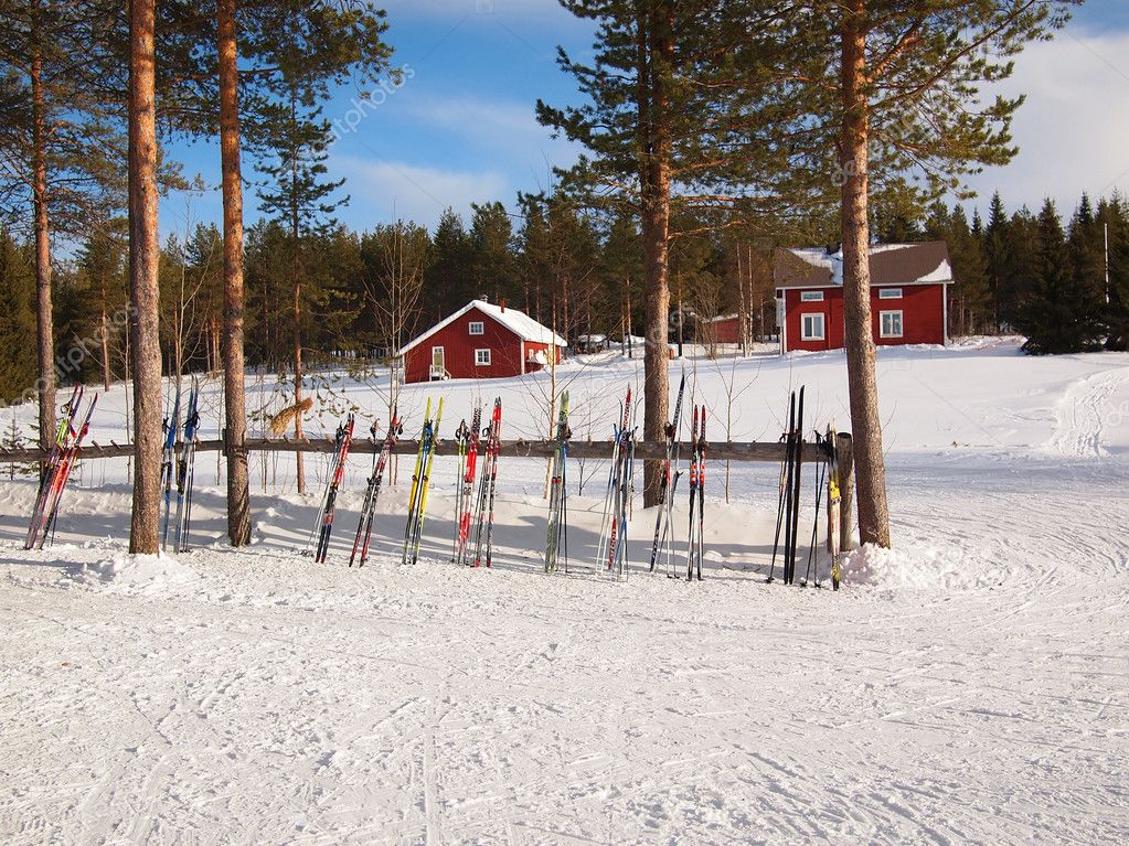 Cross-country skis in a Lapland scene