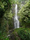Havajské tropické vodopád