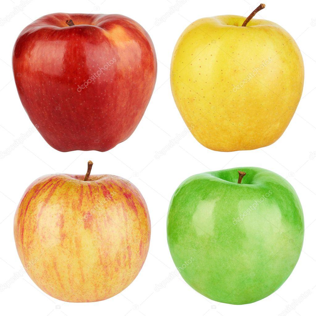 conjunto de manzanas color — Fotos de Stock © krasyuk #8128716