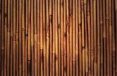 Fotografie bambus textury