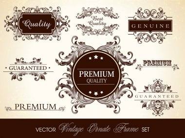 Vector set of calligraphic design ornate frame and page decorati