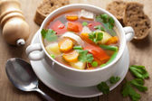 Fotografie Kuřecí polévka se zeleninou