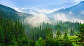 Fotografie krásné hory krajina