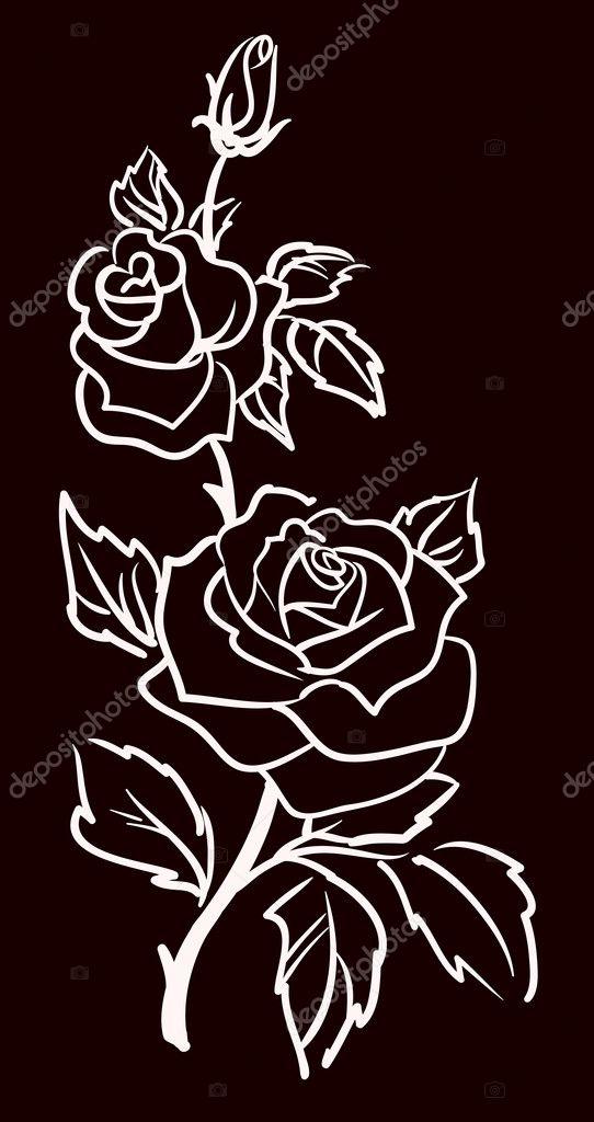 Illustrazione Di Tre Rose Bianche Tre Rose Bianche Isolati Su