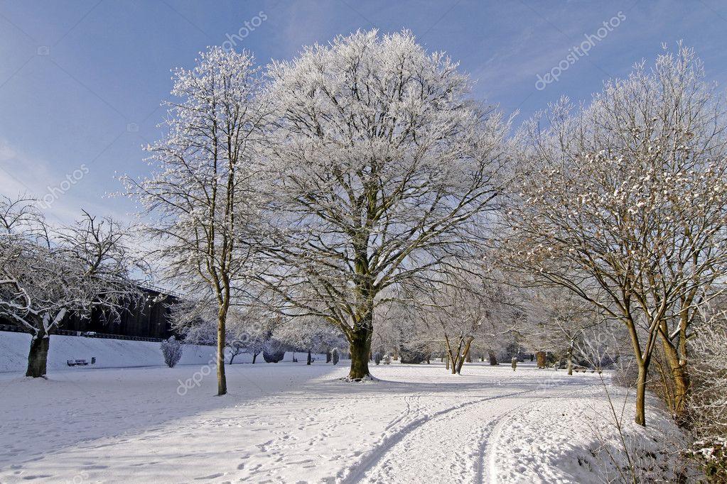 Spa park in winter - Bad Rothenfelde, Osnabruecker Land