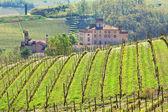Castello di barolo e vigneti. Piemonte, Italia.