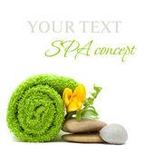 Fotografie Spa koncept - kameny, zelené listy a květ, samostatný