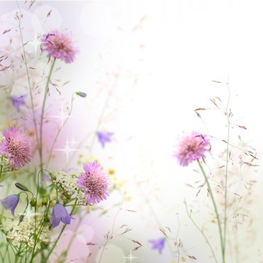 Beautiful pastel floral border beautiful blurred background (shallow depth of field) stock vector