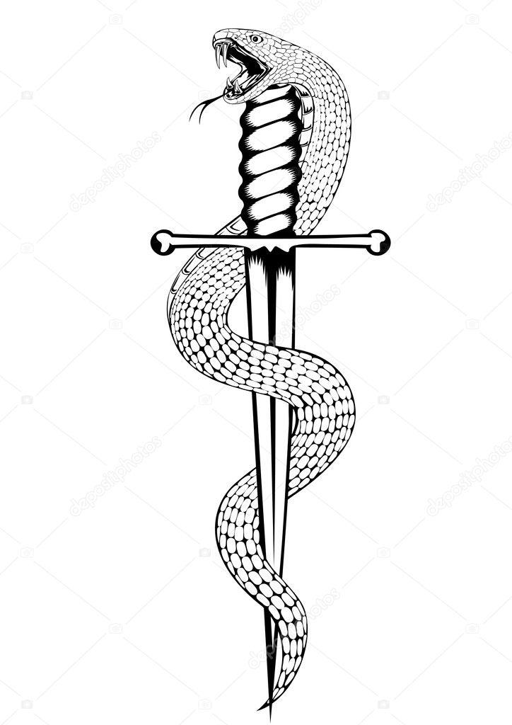 Wąż I Sztylet Grafika Wektorowa Ss1001 10517562