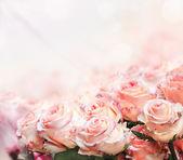 Fényképek Rózsa csokor