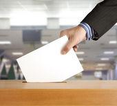 hlasování hlasování