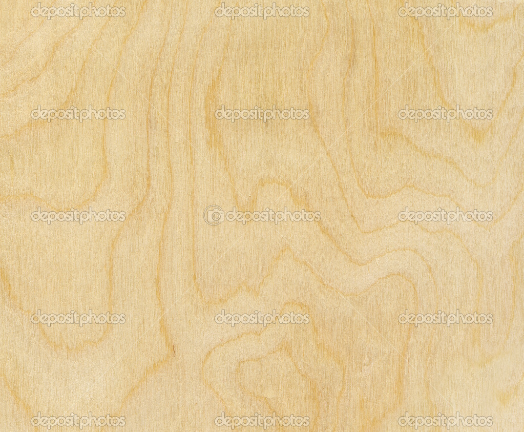 Birch wood texture stock photo auriso 8083387 for Berch wood