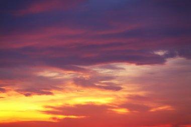 Violet sunset sky