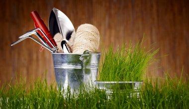 Gardening tools and houseplants