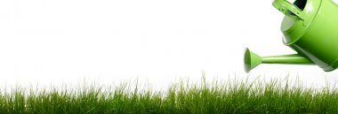 Extra large horizontal strip of grass and garden tools on white