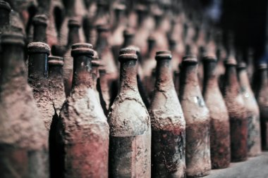 Old wine bottles covered with dust
