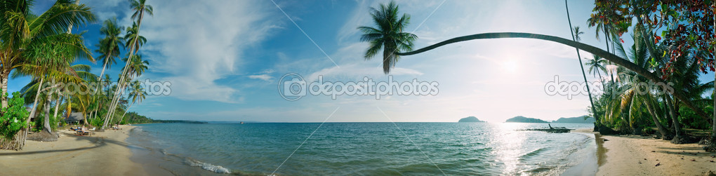 Panorama of tropical beach