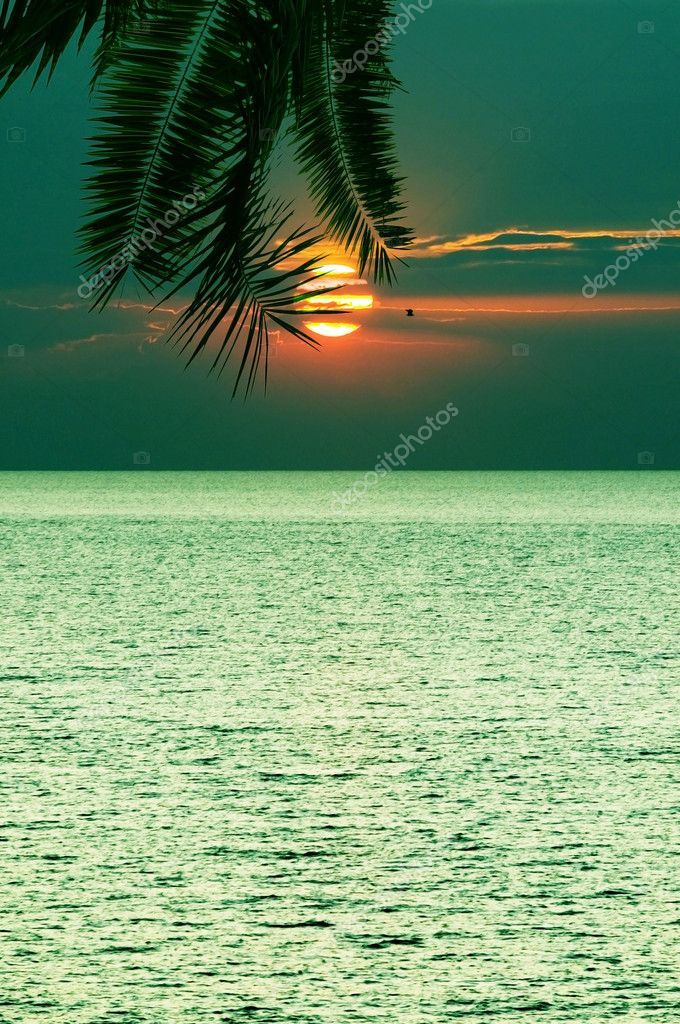 Beautifull tropical sunset at sea