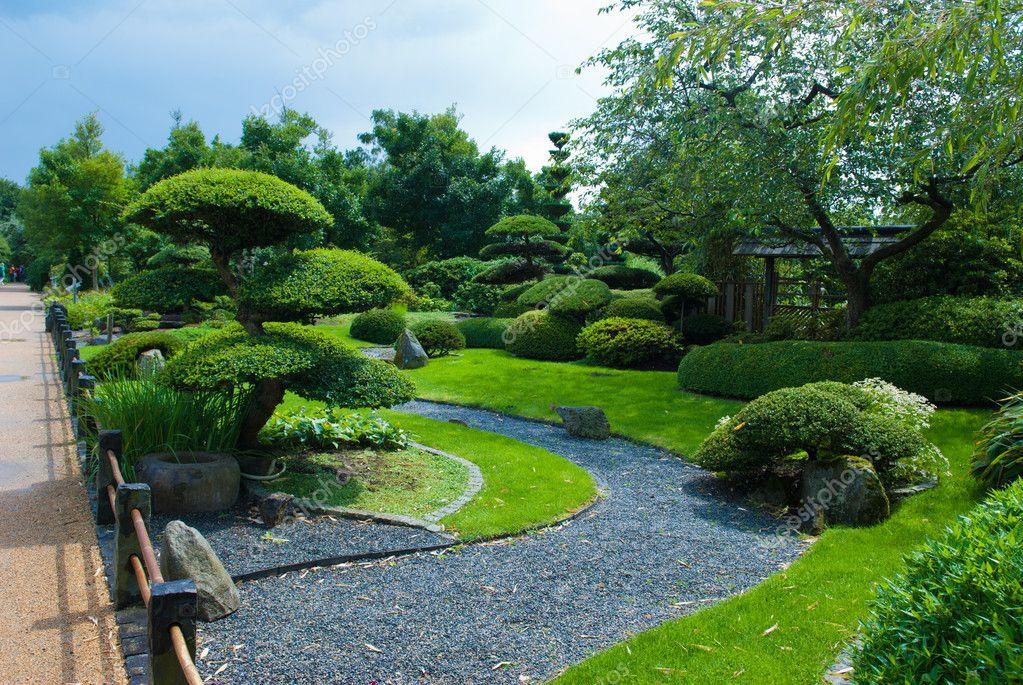 Japanese Garden Topiary U2014 Stock Photo
