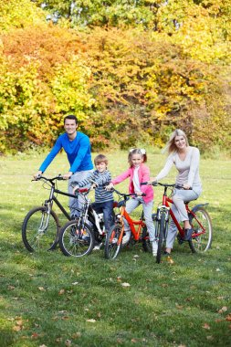 Families with children on bicycles stock vector