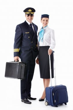 The pilot and flight attendant with a suitcase on a white background stock vector