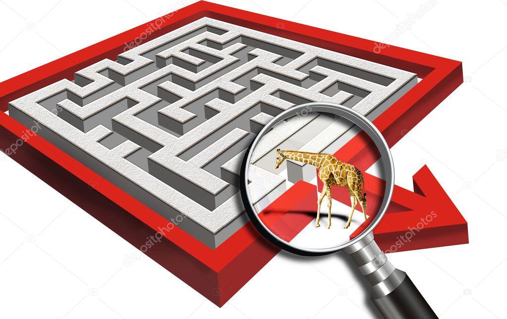 Maze and Giraffe