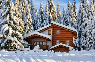 Winter beautiful snow house in forest